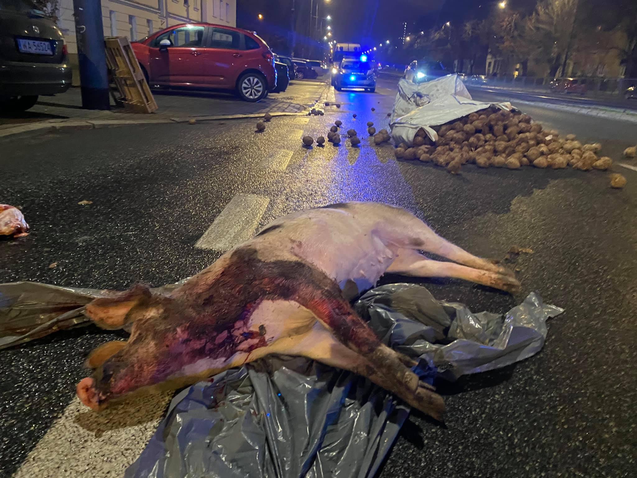 Jaja, ziemniaki imartwa świnia poddomem Kaczyńskiego. Protesty wrocznicę stanu wojennego