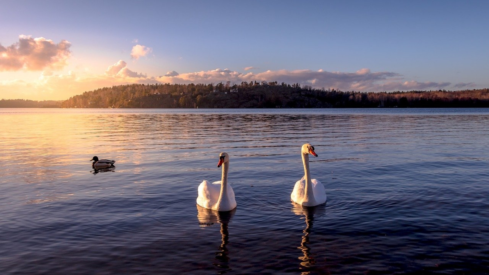 Perły listy dziedzictwa UNESCO – Szwecja