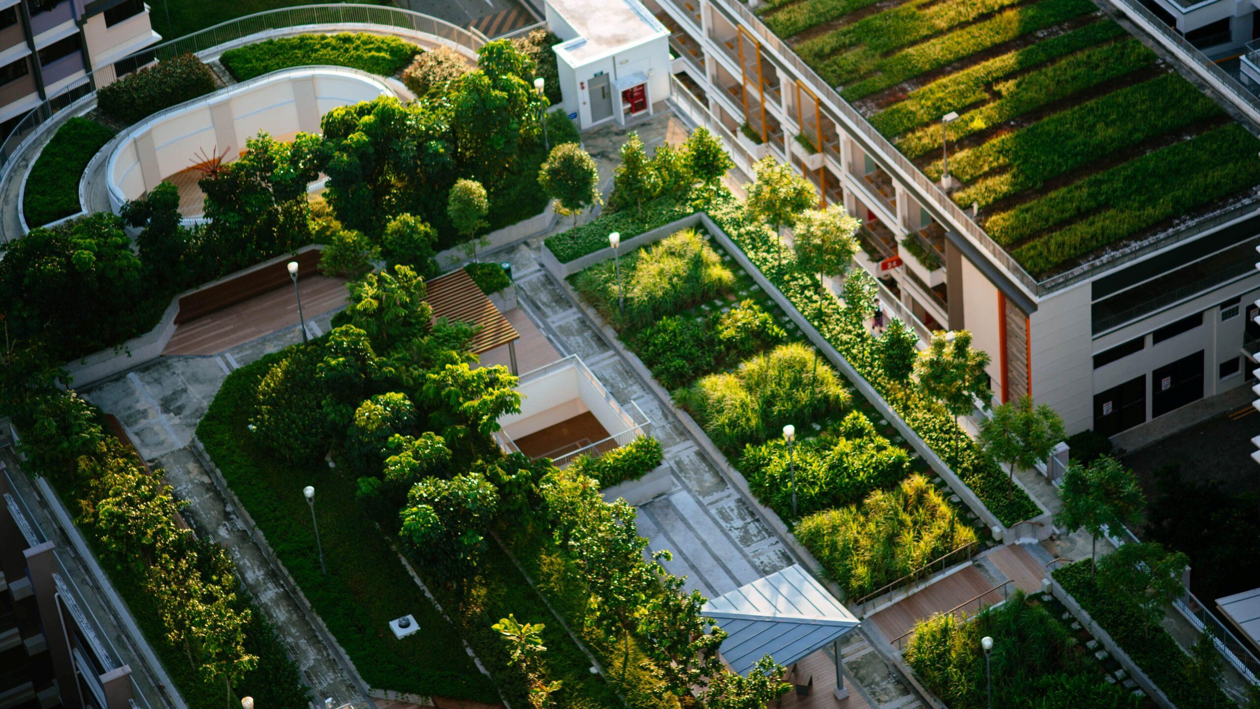 Zielony Renesans zależy od samorządów